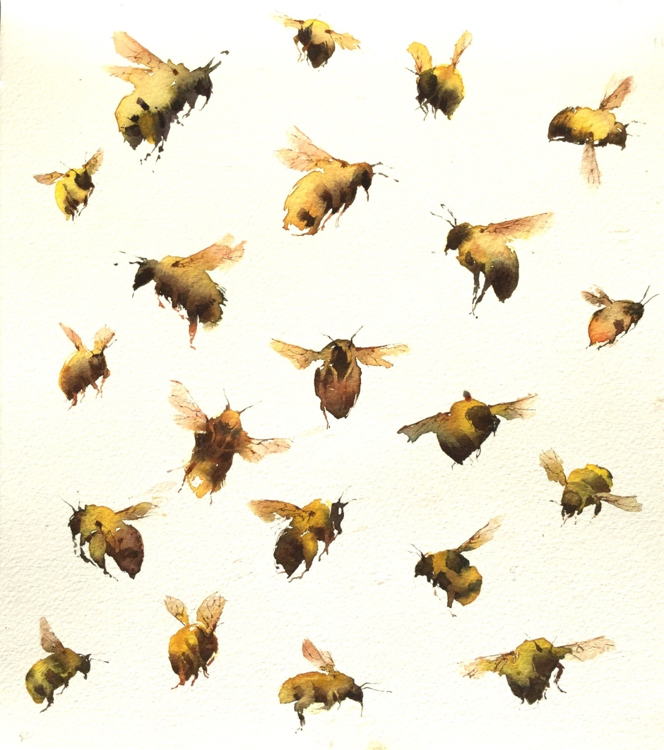 KateOsborne-Bumblebees